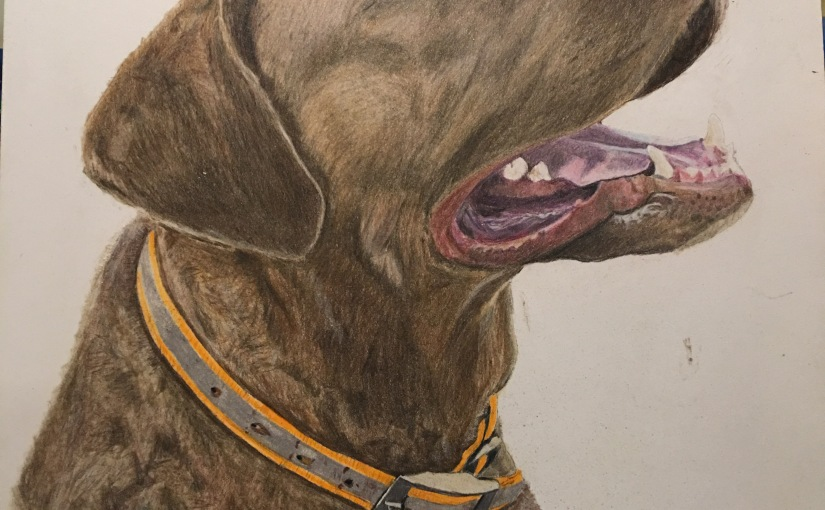 Bae – Colored Pencil Portrait on SmoothPaper