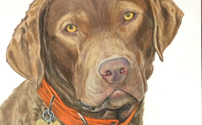 Autumn – Colored Pencil Portrait on Smooth Paper
